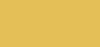 Birmingham Design Studio Logo